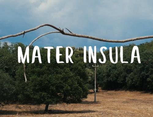 Mater Insula: Mandrolisai, nel cuore della Sardegna – Progetto di video storytelling